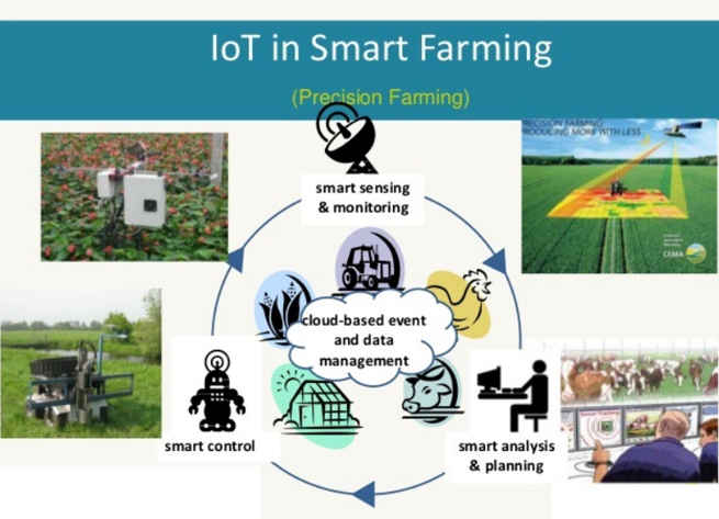 Image result for smart farm iot